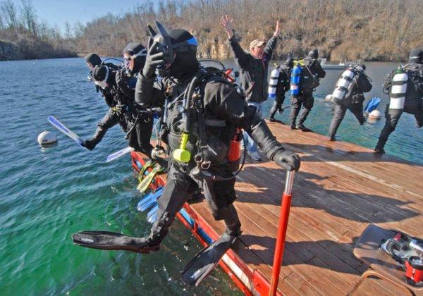 Seaweed Diver Dive Mermet Springs